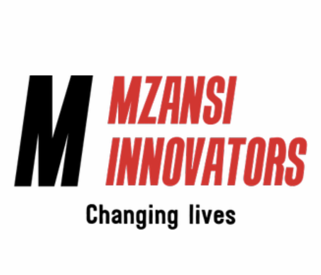 https://www.mncjobs.co.za/company/mzansi-innovators
